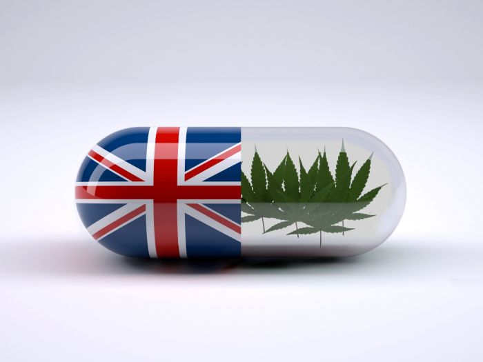 Thuốc điều trị động kinh nguồn gốc từ cần sa được chấp thuận sử dụng tại Vương Quốc Anh.